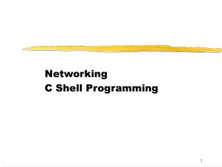 Networking C Shell Programming