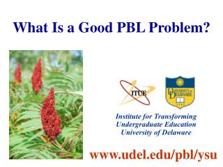 What Is a Good PBL Problem?
