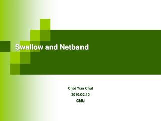 Swallow and Netband
