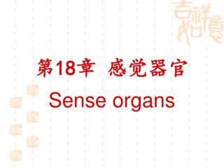第 18 章 感觉器官 Sense organs
