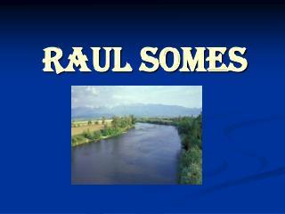Raul Somes