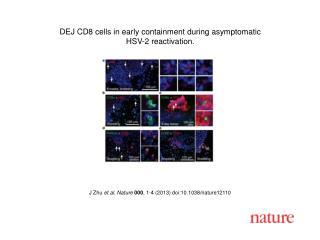 J Zhu  et al. Nature  000 , 1-4 (2013) doi:10.1038/nature12110