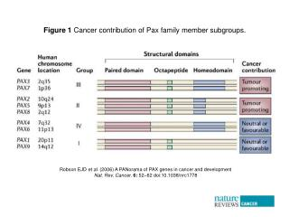 Robson EJD  et al.  (2006) A PANorama of PAX genes in cancer and development
