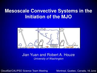 Mesoscale Convective Systems in the Initiation of the MJO