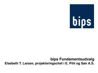 bips Fundamentsudvalg Elsebeth T. Larsen, projekteringschef i E. Pihl og Søn A.S.