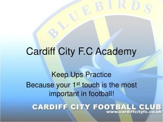 Cardiff City F.C Academy