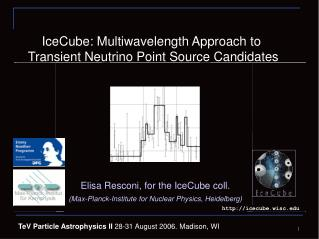 IceCube: Multiwavelength Approach to  Transient  Neutrino Point Source Candidates