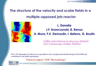 The structure of the velocity and scalar fields in a  multiple-opposed jets reactor