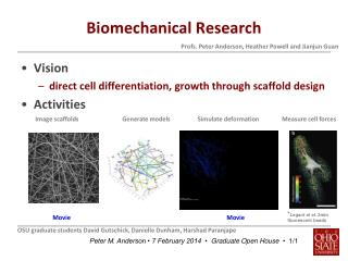 Biomechanical Research