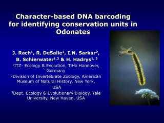 Character-based DNA barcoding  for identifying conservation units in Odonates