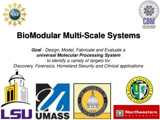 BioModular  Multi-Scale Systems