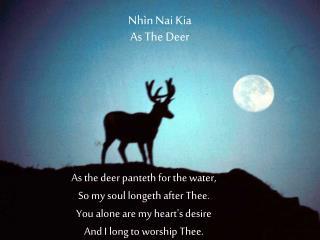 Nhìn Nai Kia As The Deer