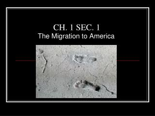 CH. 1 SEC. 1