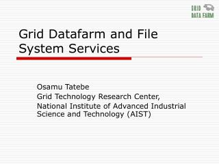 Grid Datafarm and File System Services