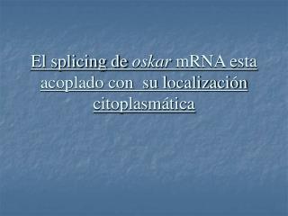 El splicing de  oskar  mRNA esta acoplado con  su localización citoplasmática