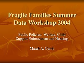 Fragile Families Summer Data Workshop 2004