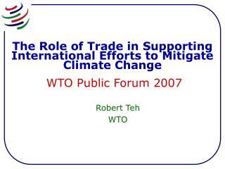 Robert Teh WTO