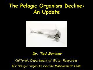 Dr. Ted Sommer