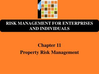 Chapter 11 Property Risk Management