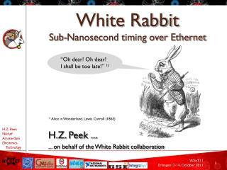 White Rabbit Sub-Nanosecond timing over Ethernet