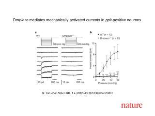 SE Kim  et al .  Nature 000 ,  1 - 4  (2012) doi:10.1038/nature10801