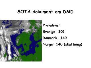 SOTA dokument om DMD