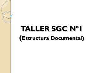 TALLER SGC N�1 ( Estructura Documental)