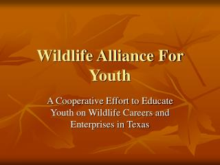 Wildlife Alliance For Youth