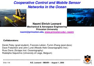 Cooperative Control and Mobile Sensor Networks in the Ocean