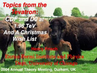 Topics from the Tevatron: CDF  and  D0  at 1.96 TeV  And A Christmas Wish List