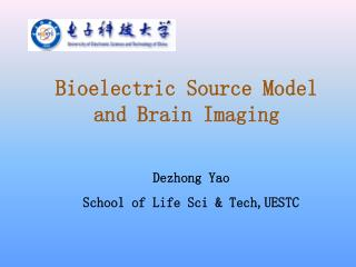 Bioelectric Source Model and Brain Imaging