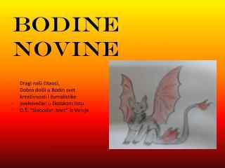 BODINE NOVINE