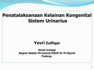 Penatalaksanaan Kelainan Kongenital Sistem Urinarius Yevri  Zulfiqar Divisi Urologi