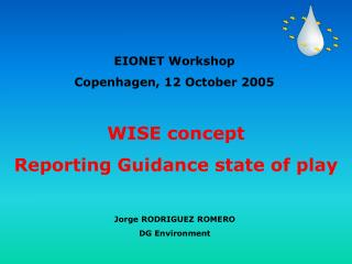 WISE concept Reporting Guidance state of play
