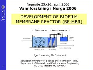 DEVELOPMENT OF BIOFILM MEMBRANE REACTOR ( BF-MBR)