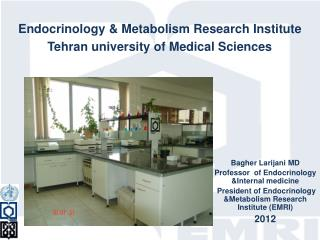 Bagher Larijani MD  Professor  of Endocrinology &Internal medicine