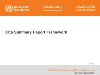 Data Summary Report Framework