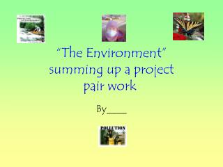 """The Environment"" summing up a project pair work"