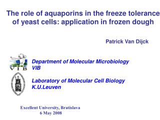 The role of aquaporins in the freeze tolerance of yeast cells: application in frozen dough