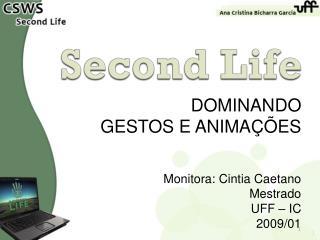 DOMINANDO  GESTOS E ANIMAÇÕES Monitora: Cintia Caetano Mestrado UFF – IC 2009/01