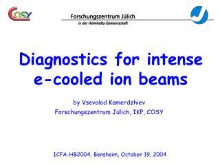 Diagnostics for intense e-cooled ion beams