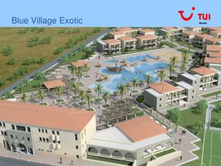 Blue Village Exotic