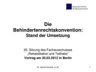 Die  Behindertenrechtskonvention: Stand der Umsetzung