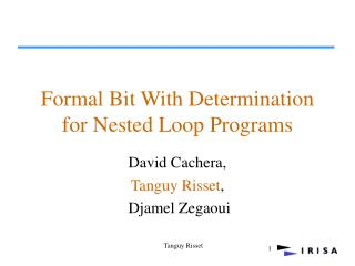 Formal Bit With Determination for Nested Loop Programs