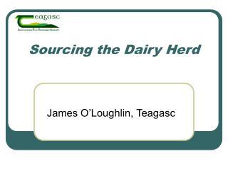 Sourcing the Dairy Herd