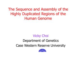 The Sequence and Assembly of the Highly Duplicated Regions of the Human Genome