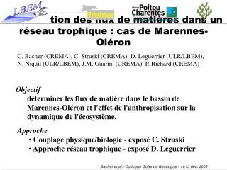 Modélisation des flux de matières dans un réseau trophique : cas de Marennes-Oléron