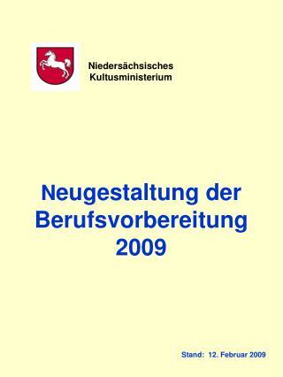 N eugestaltung der Berufsvorbereitung  2009        Stand:  12. Februar 2009