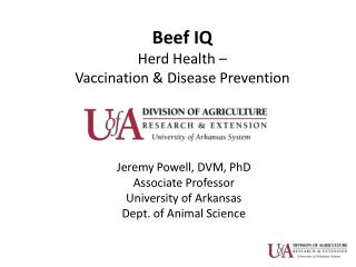 Beef IQ  Herd Health –  Vaccination & Disease Prevention