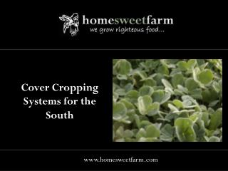 Cover Cropping Systems for the South